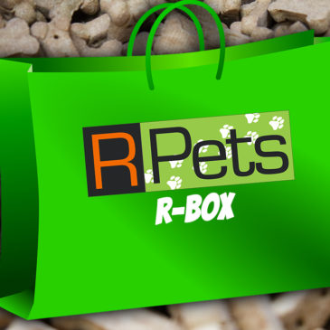 We're Proud to Introduce the R Box from R-Pets!