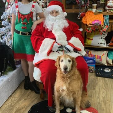 Photos from Santa's Visit to R-Pets in Tipp!
