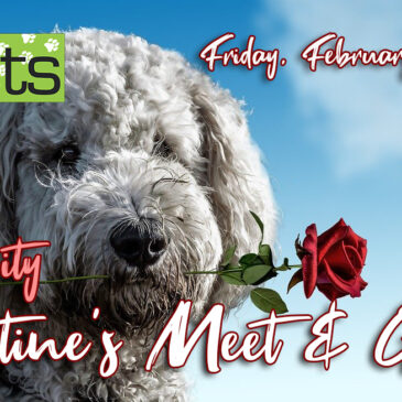 Valentine's Day Meet & Greet | Tipp City Location 2/14/20 6-7 pm