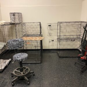 Grooming supplies crates dryers shampoos all for $75.